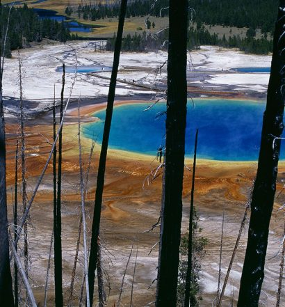 Yellowstone_Pasquale_Angelini