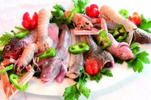 i pesci del brodetto 1