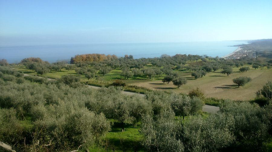 Panorama sulla Costa dei Trabocchi dall'Abbazia di S. Giovanni in Venere (ph. Ivan Masciovecchio)