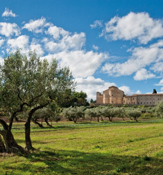 Campagna attorno a Abbazia di San Giovanni in Venere (ph. sito Camminata tra gli olivi)