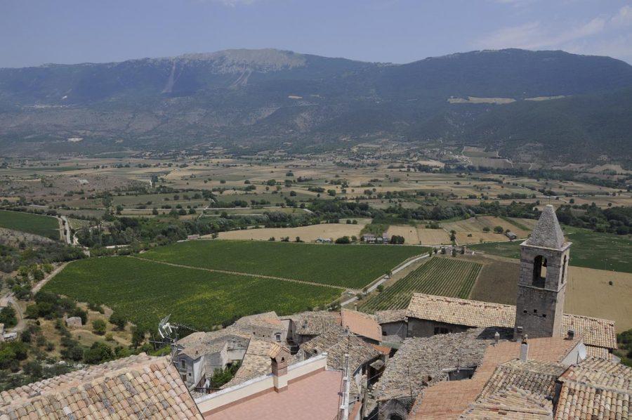 Veduta dal castello di Capestrano sui vigneti della Valle del Tirino (ph. Ivan Masciovecchio)