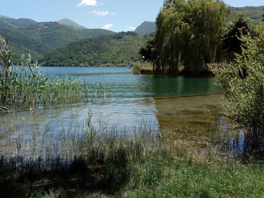 La vegetazione presente all'ingresso del lago di Scanno.