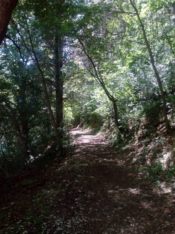Scorcio di un sentiero naturale dell'Eremo di San Domenico.