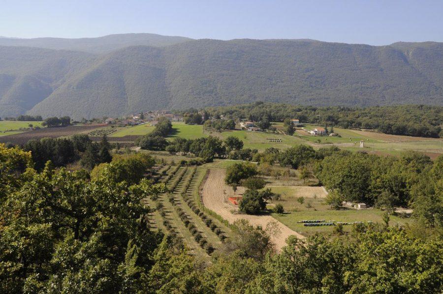 Tartufaia con vista sulla valle (ph. Ivan Masciovecchio)
