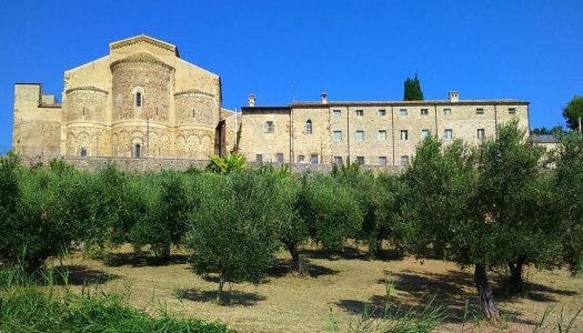 Camminata tra gli olivi alla scoperta dell'oro verde d'Abruzzo