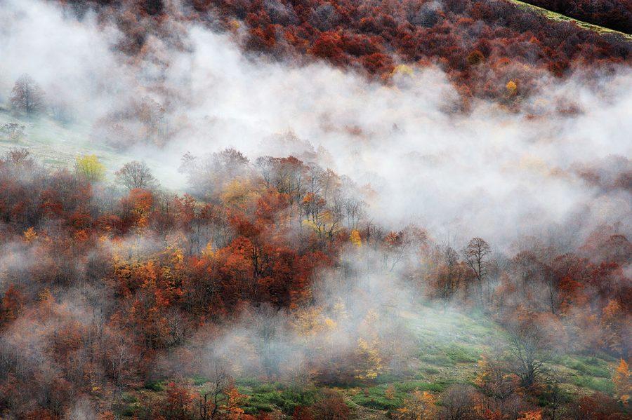 Parco Nazionale d'Abruzzo, Lazio e Molise. (ph. Mauro Vitale)