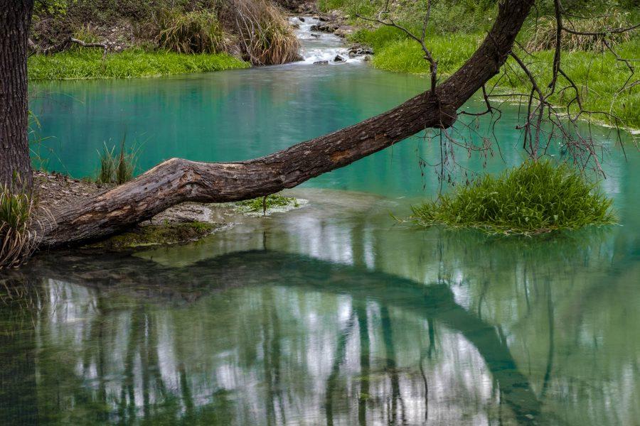 Un primo piano delle acque azzurre del Lavino.