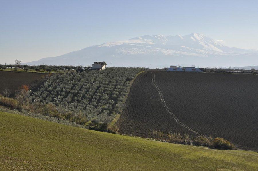 Vista panoramica dalla Statale 81 sul massiccio della Majella (ph. Ivan Masciovecchio)