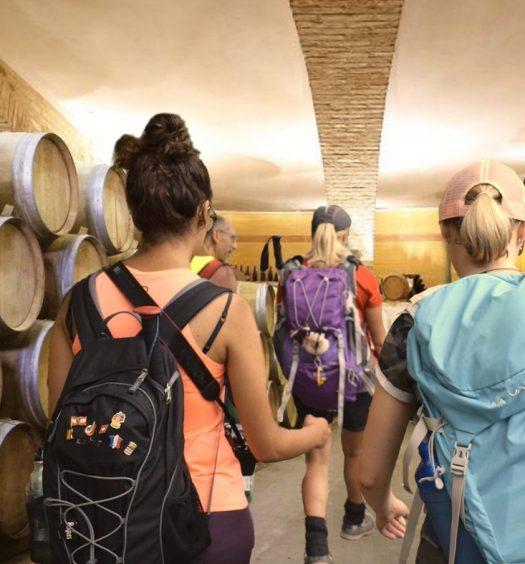 La locandina dell'edizione 2020 di Vini e Cammini