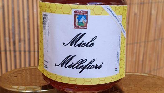 """Nasce """"Fior di Gran Sasso"""" il miele millefiori del Parco Nazionale"""