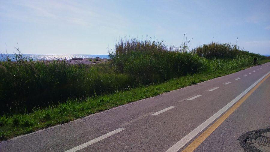 La pista ciclopedonale nel tratto a nord di Pineto (ph. Ivan Masciovecchio)